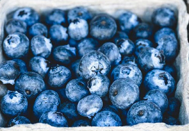 BlueBerries Superfoods